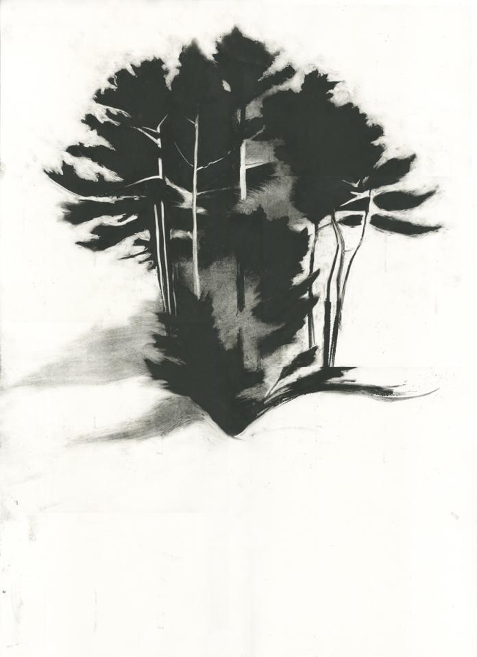 """The Prow, monotype, 36"""" x 24"""", 2013"""